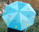 Kann Karate Küken - Regenschirm
