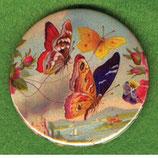 Schmetterlinge - Magnet