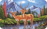 Bambis - Magnet