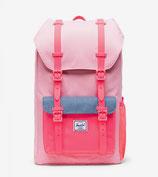 Little America Youth peony/neon Pink/Ballad Blue - 1 poche sur le côté - 18L - 43x28x13cm