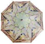 Regenschirm Blaumeise