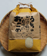 商品名 石川県産 コシヒカリ 令和3年産 5kg 精米