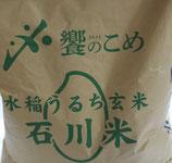 商品名 石川県産 コシヒカリ 令和3年産 20kg 精米