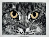 Estampe chat maine coon d'après une matrice en linoléum.