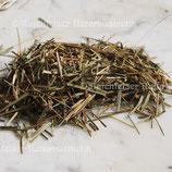 Sweet Gras - Mariengras