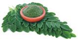 Moringa Blattpulver 100 g