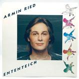 Armin Ried - Ententeich