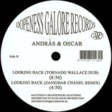 András & Oscar - What You Want / Looking Back