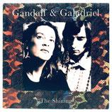 Gandalf & Galadriel - The Shining