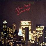 Jo Schmidt - New York Evenings
