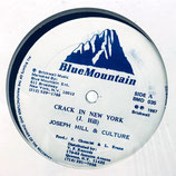 Joseph Hill / Culture - Crack In New York / I'm Worried