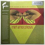 Oscar Rocchi & Tullio De Piscopo - Metamorphosis