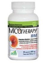 Fungo Medicinale BIO Reishi Anti stress - BM