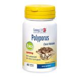 Polyporus Fungo Medicinale BIO - LongLife