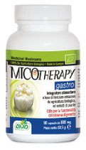 Fungo Medicinale BIO Hericium funzionalità gastrointestinale - GASTRO