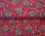 Pinke Zebras