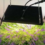 100W LED Pflanzenlampe