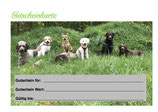 Geschenkkarte für Hundetraining