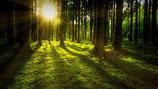 Aktivierung Deines Energiepotentials / Spirituelle Einweihung