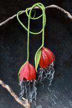 Doppelblüten (Rot mit Locken)