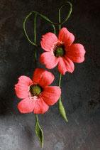 Doppelblumen (Rot)