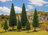 Faller  181481 20 Nadelbäume