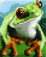 801452 Grenouille