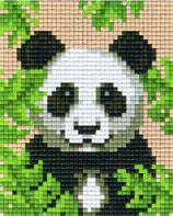 801432 Panda