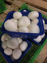 .Champignons blancs 500g
