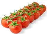 Tomate cerise branchée