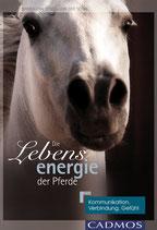 Die Lebensenergie der Pferde (Nanda van Gestel-van der Schel)