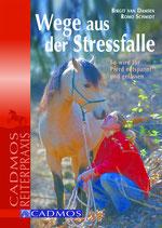 Wege aus der Stressfalle (Van Damsen/Schmidt