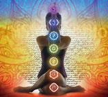 Formation Chakra & Harmonisation
