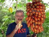 Rote Bananen getrocknet 100 g, Natur pur