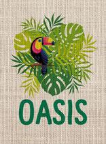 Salvador Oasis BIO