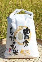 無農薬ひのひかり10kg 玄米