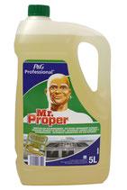 Mr. Proper krachtige reiniger en ontvetter 5000ml