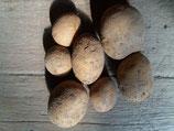 Kartoffel- festkochend