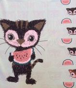 Melonen-Katze