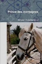 PRINCE DES MONTAGNES (Roman)