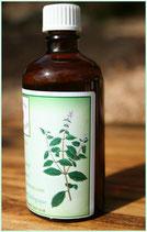 Menthe verte hydrolat 100 ml