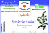 Genévrier (baies) hydrolat 100 ml