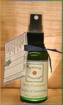Elixir spagyrique aux douze plantes 30 ml