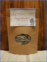 Sauge blanche bio (Salvia apiana)