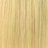 Farbe 23 - Hairextensions