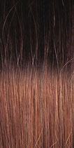 Farbe T 6/12 - Hairextensions