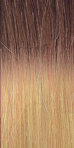 Farbe T 10/DB2 - Hairextensions