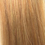 Farbe 24 - Hairextensions Weavy