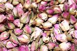 Rosenknospen persisch (einzelne Knospen)