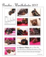 Pinscher Kalender 2018